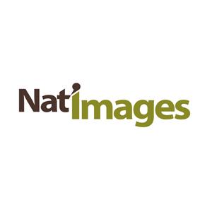 LOGO NAT'IMAGES