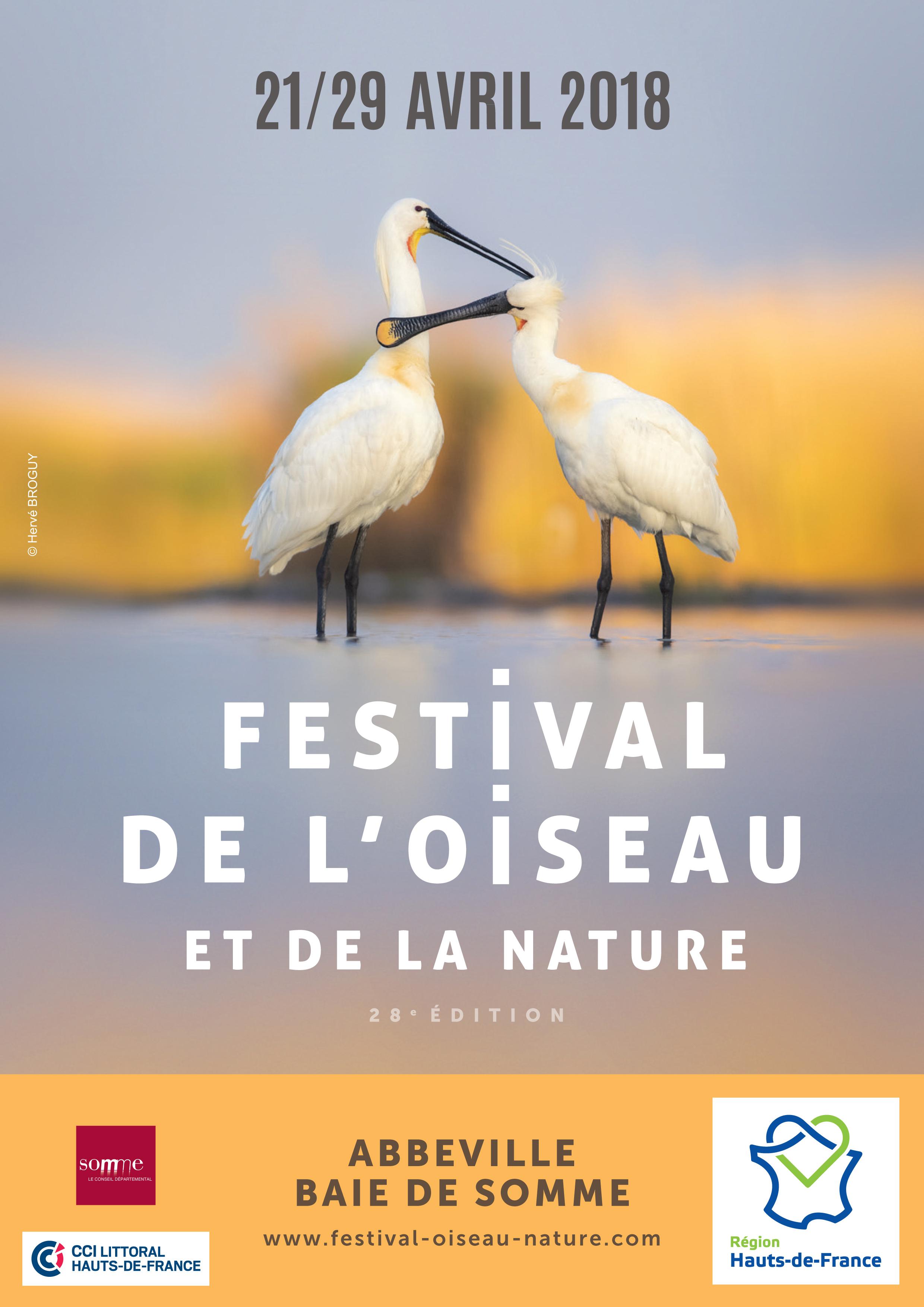 Festival - Stéphane Velut